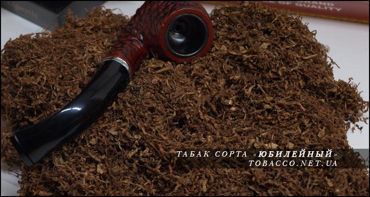 Табак на развес Юбилейный, фото, цена, сорт, Украина, купить
