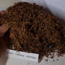 Табак сорта «Берли» (ферментированный, крепкий)