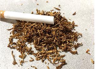 Табак на развес лапшой